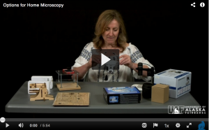 Dr Steffi Ickert-Bond shows options for home microscopy