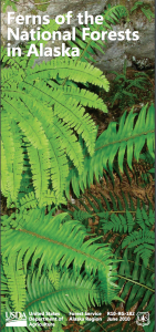 A thumbnail of the cover of the guide to ferns of the National Forests of Alaska